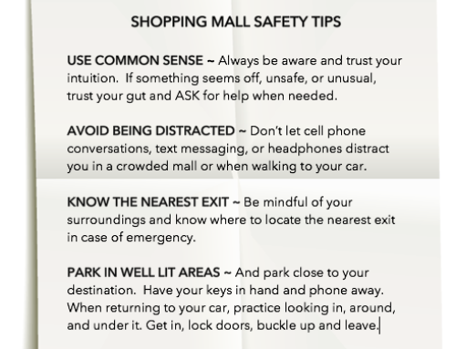 Tips for Holiday Shopping to Stay Safe